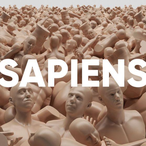 lor-du-commun-sapiens-58814